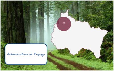 Arboriculture et Paysage